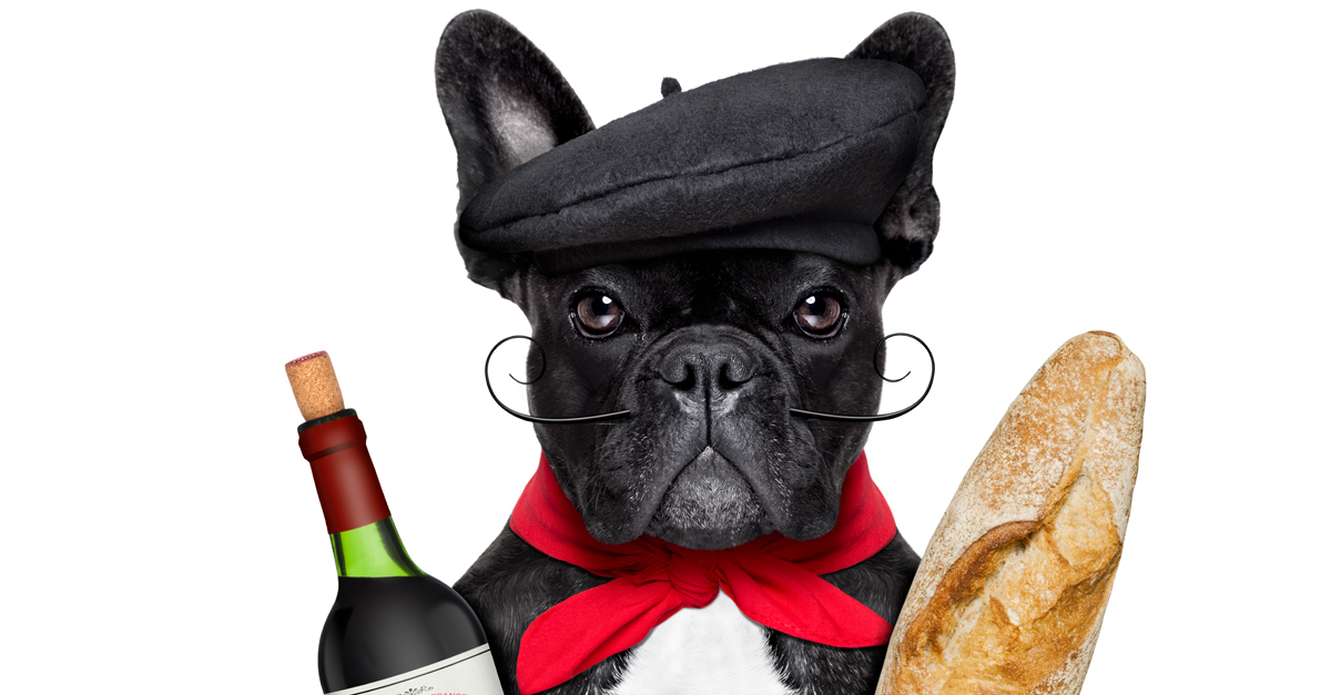french dog wine hair loss