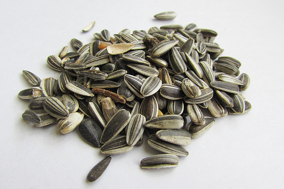 cold pressed sunflower seeds